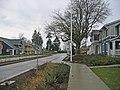 High Point Tree saving sidewalk (4575042976) (2).jpg