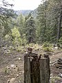 Highline Trail, Payson, Arizona - panoramio (6).jpg