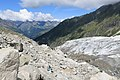 Hike to Glacier d'Argentière - panoramio (27).jpg