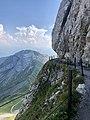 Hiking in Switzerland.jpg