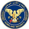 Homeland security 2014-06-20 09-38.jpg