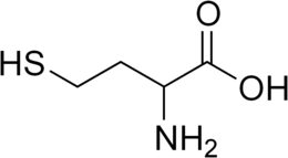 Homocysteine racemic.png