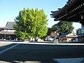 Hongan-ji National Treasure World heritage Kyoto 国宝・世界遺産 本願寺 京都176.JPG