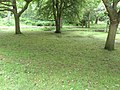 Hotham Park After all the Flash Flooding - panoramio.jpg
