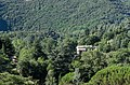 House in the woods - panoramio.jpg