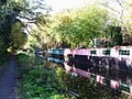 Houseboats (and reflections) on the Basingstoke Canal - geograph.org.uk - 1078229.jpg