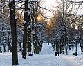 Humlegården December 2012 01.jpg