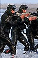 IRGC naval execise-2015 (11) (cropped2).jpg