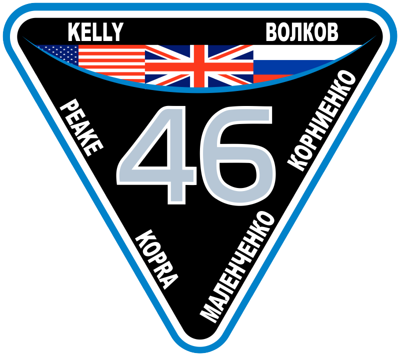 https://upload.wikimedia.org/wikipedia/commons/thumb/8/80/ISS_Expedition_46_Patch.png/800px-ISS_Expedition_46_Patch.png