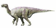 Iguanodon new NT
