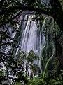 Iguazú Falls Argentinia (111151593).jpeg