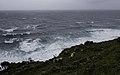 Ilha das Flores P5260042 (35621107500).jpg
