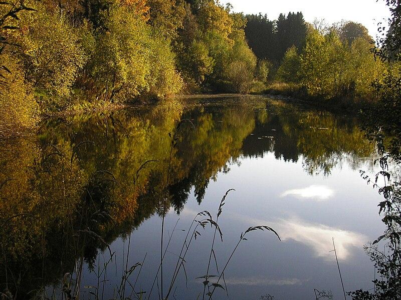 Im Poncetal, East Belgium