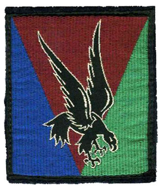 10th Parachute Division (France) - 10e DP Shoulder Arm Insignia