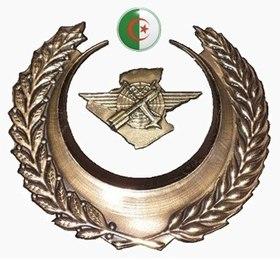 قوات الدفاع الجوي عن الإقليم الجزائر ويكيبيديا