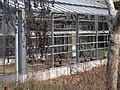 Invernadero abandonado - panoramio.jpg