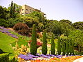 Israel-Carmel-050508 039 (2552145494).jpg