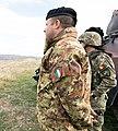 Italy Romania exercises (49025964943) (cropped).jpg