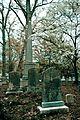 Ivy Hill Cemetery-2354.jpg