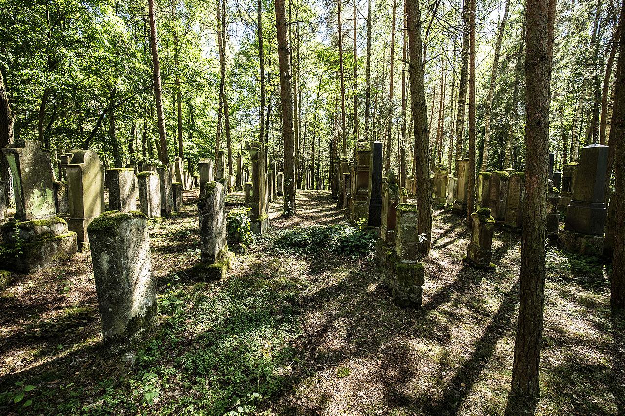 Jüdischer Friedhof Zeckern3.jpg