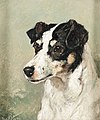 Jack Russel by John Emms, 1873.jpg