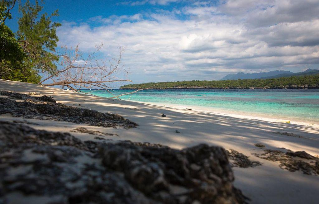 Jaco island.jpg