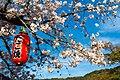 Japan 050416 Maruyama 004.jpg