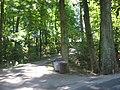 Jersey Park Farm driveway.jpg
