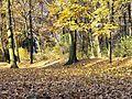 Jesiennie... - panoramio.jpg
