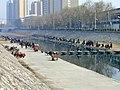Jiyuan - Manghe N St, canal, pic02.jpg