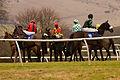 Jockeys at Plumpton Races (4369831133).jpg