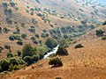 Jordan River near Kfar Hanasi.jpg