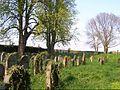 Judenfriedhof Essingen.jpg