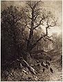 Julius Mařák - les.jpg