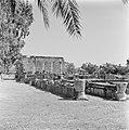 Kapernaum. Gezicht op de gedeeltelijk gereconstrueerde synagoge uit de derde eeu, Bestanddeelnr 255-1529.jpg