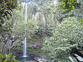 Katibawasan Falls, Camiguin.JPG
