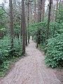 Kernavės sen., Lithuania - panoramio (15).jpg