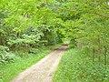 Kerzendorf - Wanderweg (Footpath) - geo.hlipp.de - 37947.jpg