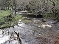 King Water near Snowden Close, Cumberland - geograph-1847566.jpg