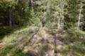 Kiviumpaidanmäki eli Pellasmäki 1.png