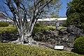 Kofu Castle 201904o.jpg