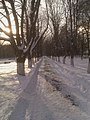 Kolomna, Moscow Oblast, Russia - panoramio (20).jpg