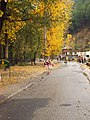 Kullu Valley in autumn, Himachal Pradesh.jpg