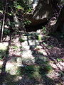 Kumano Kodo Dainichigoe World heritage38.JPG