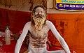 Kumbh Mela, India (40316954103).jpg