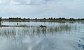 Lake Abanampotsy - fishermen.jpg
