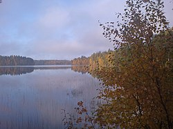 "Lake from Nokia ""Alinenjärvi"" - panoramio.jpg"