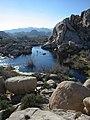Lake in Joshua Tree National Park USA.jpg
