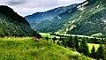 Landschaftsschutzgebiet Hefferthorn Fellhorn Sonnenberg.JPG