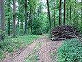 Landschaftsschutzgebiet Strothheide Melle Datei 18.jpg